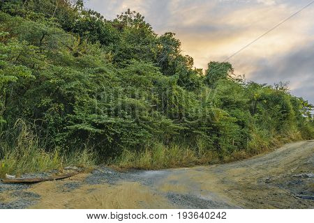 Dirt road meadow landscape scene at Guayaquil outskirts Ecuador