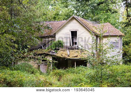 Broken Down Forgotten House In An Overgrown Forest