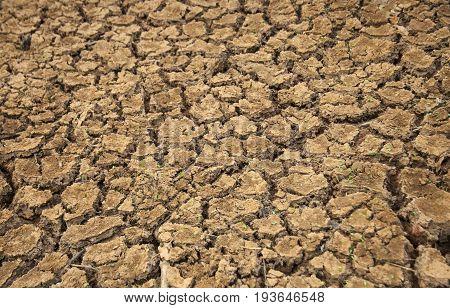 soil arid texture .dryness in the desert