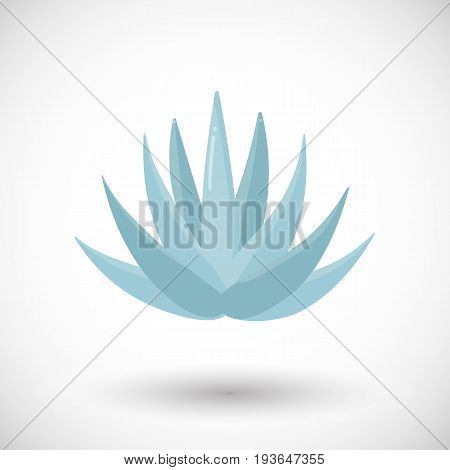 Blue agave plant vector flat icon Flat design of food drink tequila making product and nature object with round shadow isolated on the white background cute vector illustration with reflections