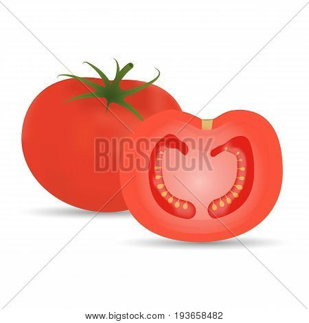 Tomato And Slice Photo-Realistic Vector Illustration Isolated On A White Background. Realistic Vector Illustration.