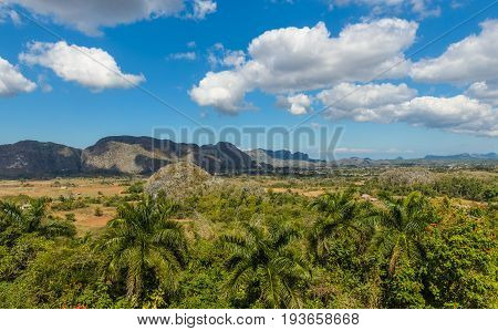 View on the Vinales valley in which the tobacco plant from which he is produced is being planted best in the world cigars Cuba Pinar del Rio province