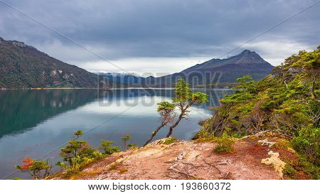 Gorgeous Landscape Of Patagonia's Tierra Del Fuego National Park In Autumn