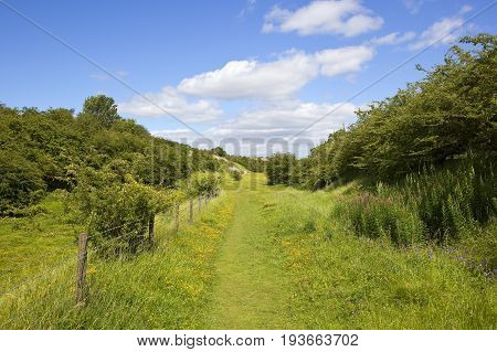 Yorkshire Wolds Nature Reserve