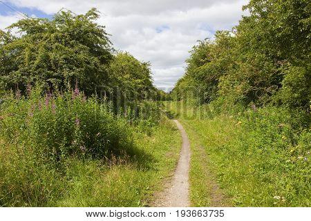 Yorkshire Nature Walks