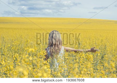 Woman with long hair back view yellow rapeseed canola field enjoying nature and sunlight