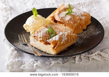 Cottage Cheese Strudel With Vanilla Ice Cream Close-up. Horizontal