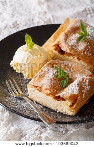 Delicious Viennese Cheese Strudel With Vanilla Ice Cream Close-up. Vertical