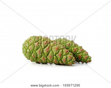 Green cones on a white background. Cones of pine.