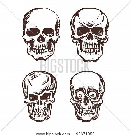 Set of vector skulls. Hand drawn skull, isolated on white background. Monochrome skull art. Vector graphics.