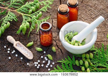 Bottles Of Homeopathic Globules, Thuja Occidentalis Drugs, Mortar And Pestle. Homeopathy Medicine Co