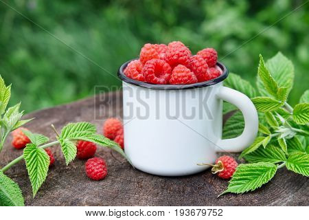 Enameled mug of fresh ripe raspberries outdoors.