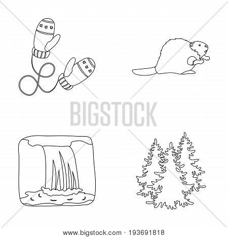 Canadian fir, beaver and other symbols of Canada.Canada set collection icons in outline style vector symbol stock illustration .
