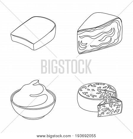 Gruyere, camembert, mascarpone, gorgonzola.Different types of cheese set collection icons in outline style vector symbol stock illustration .