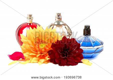 Bottles of essential perfume and flowers, over white background.