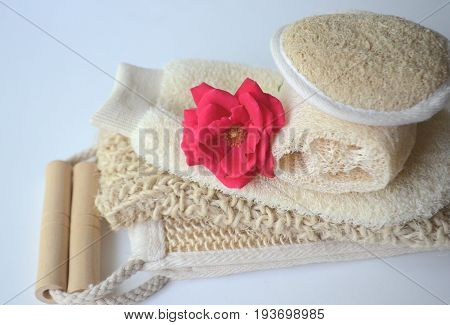 Top close up view of a set of body massage brushes for dry brushing with a red rose on white