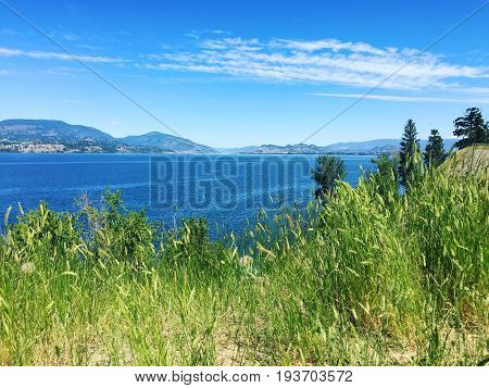 Lake and mountains landscape view from hilltop with tall green grass on a sunny day.