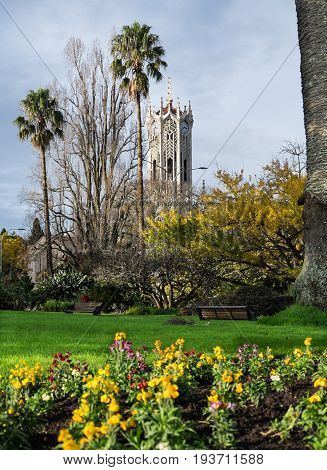Albert Park in winter with flowers and Auckland University Clock Tower New Zealand NZ