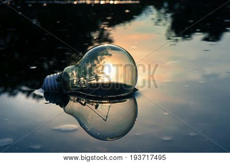 A scene of a light bulb left on the flooded floor with the reflect of the sun represents the conceptual of inspiration, creative ideas and motivation.