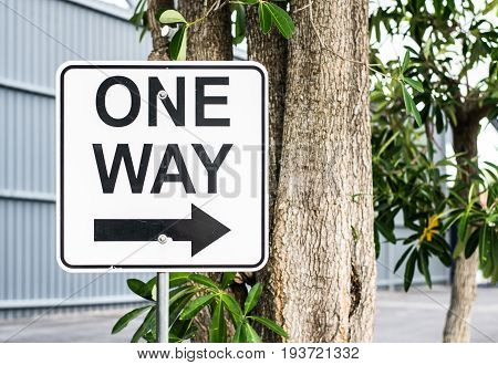 signs one way signs, sign one way, one way.