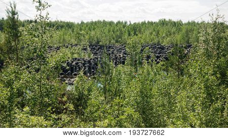 Used tires in the forest, a toxic landfill in nature