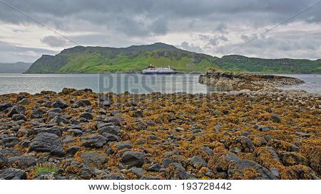 Portree Bay with the Islet of Sgeir Mhor in the foreground and a colorful seashore, Isle of Skye, Highlands, Scotland, UK