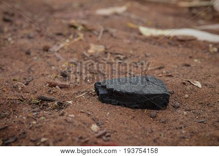 Piece Of Burnt Wood Coal On The Ground