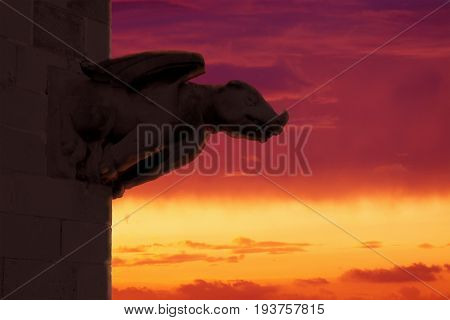 Gargoyle against a red cloudy sky. Mytology symbol and empty copy space for Editor's text.