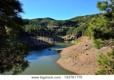 Water dam and pine forest, summit of Gran canaria, Canary islands