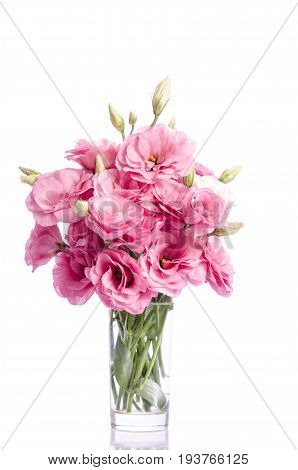 Bunch Of White And Pink Eustoma Flowers In Glass Vase Isolated On White
