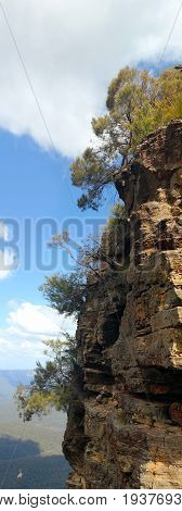 Blue Mountains : Trees on high rock with blue sky and clouds