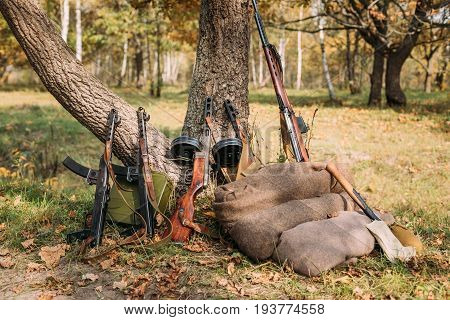 Soviet Russian Military Ammunition Weapon Of World War II. PPS-43, PPSh-41 Submachine Gun And SKS Rifle Leaning Against Trunk Of Tree. Weapon Of Red Army.