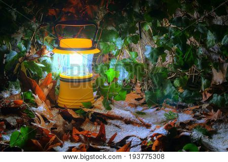 Luminous hand lantern standing on the iced dry leaves of oak near wall with ivy