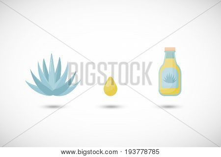 Blue agave syrup vector flat icons set Flat design of food tequila making product and nature objects with round shadow isolated on the white background cute vector illustration with reflections