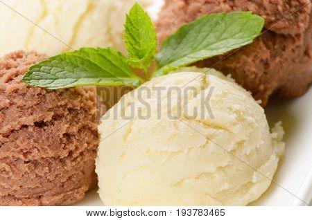 Cocoa and vanilla ice cream scoop on white plate