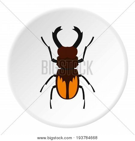 Stag beetle icon in flat circle isolated vector illustration for web