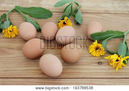 Fresh eggs on a wooden table with yellow flowers Structure of the tree combination of flowers and brown eggs