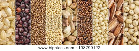 gluten free grains collection (brown rice, quinoa, teff, amaranth, buckwheat, kaniwa,millet, sorghum) - a collage image