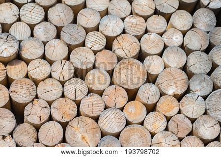 Pile oforganik wooden logs with cross section of the timber, firewood stack. Environmental concept. For natural design, patterns, background
