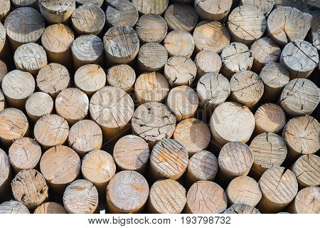 Preparation of winter firewood. Pile from many cracked big and small logs. Environmental concepts and principles. For natural design, patterns, background