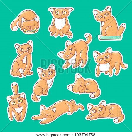Textured color vector set of illustration sticker of cute emotional ginger kitten. The face of the cat reflects different emotions fear, anger, and love. Pussycat is sleeping, drinking from bowls