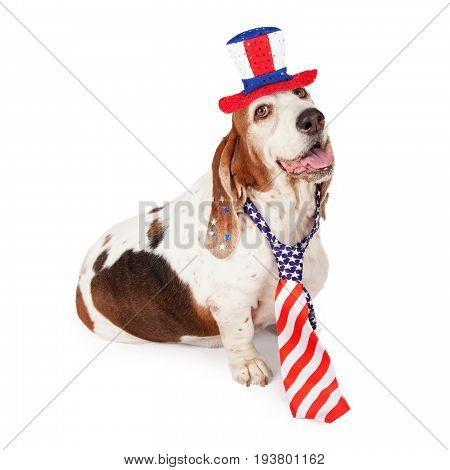 A happy Basset Hound dog wearing a red white and blue American flag necktie and hat for the Fourth of July Independence Day holiday.