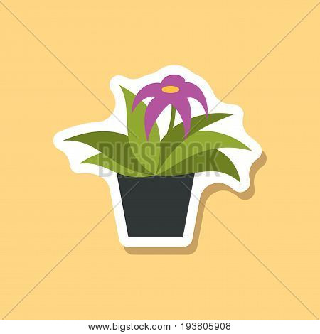 paper sticker on stylish background Gerbera in a pot