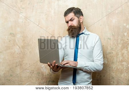 bearded man or hipster with long beard and stylish hair on serious face in tie and white shirt hold laptop on textured beige background digital marketing and business agile business businessman
