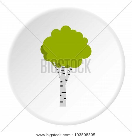 Birch icon in flat circle isolated vector illustration for web