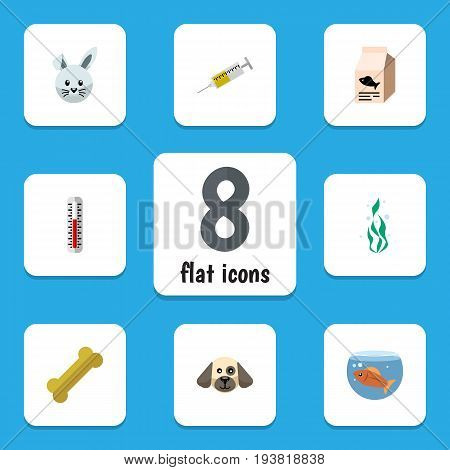 Flat Icon Pets Set Of Fish Nutrient, Osseous, Vaccine And Other Vector Objects. Also Includes Hound, Osseous, Dog Elements.