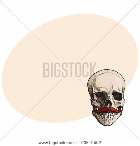 Hand drawn human skull with curled upward hipster red moustache, sketch style vector illustration with space for text. Realistic front view hand drawing of human skull with moustache, whiskers