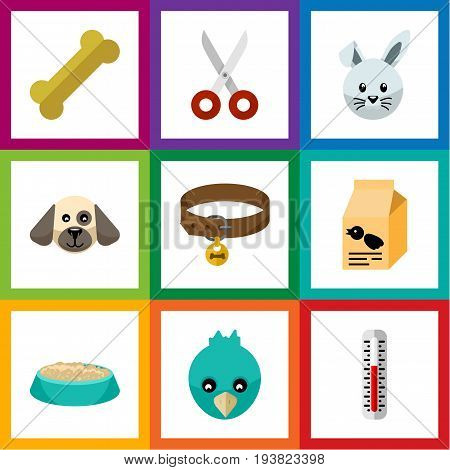 Flat Icon Animal Set Of Temperature Measurement, Bunny, Shears And Other Vector Objects. Also Includes Nutrient, Puppy, Measurement Elements.
