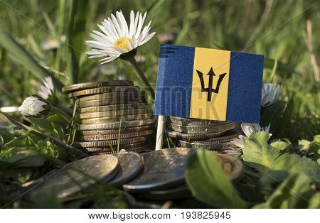 Barbados Flag With Stack Of Money Coins With Grass And Flowers
