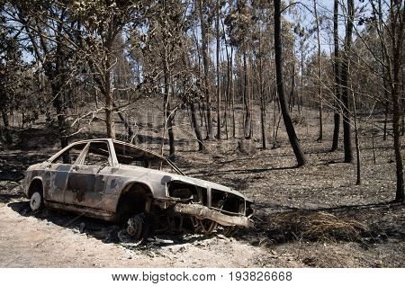 Burnt car pushed aside the road before a burnt forest caused by a massive forest fire. Pedrogao Grande Portugal.